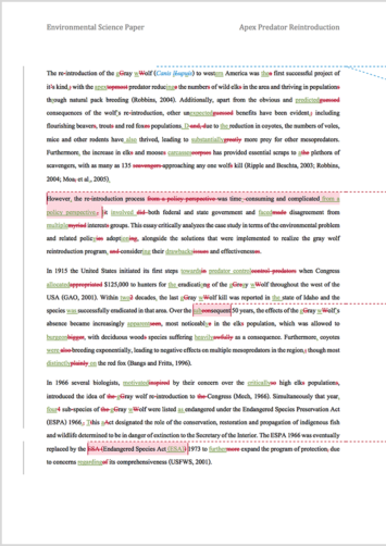 Paper Proofreading Example (After Editing)